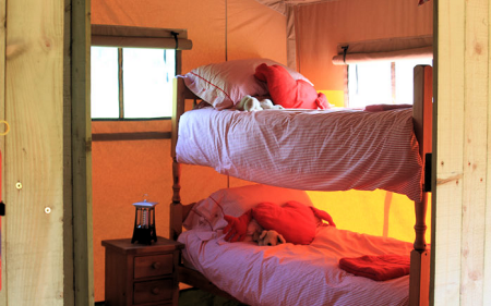 6_safari_ten_bedroom2_450x281px